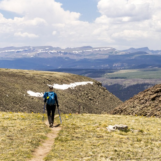 Continental Divide Trail: Spring Creek Pass to Snow Mesa