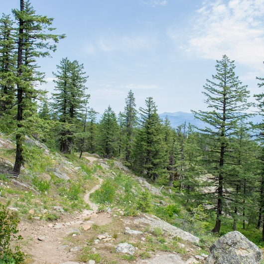 Mickinnick Trail
