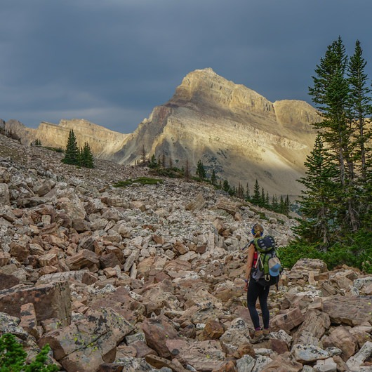 NW Wasatch Peak / Wasatch Benchmark