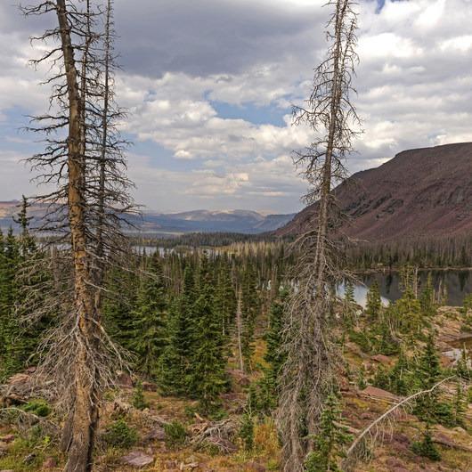 Mohawk Lake Trail