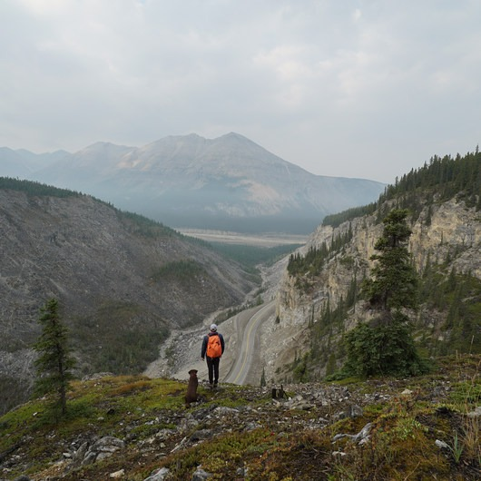 The Cut Trail