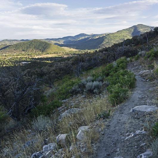 Iron Bill Trail