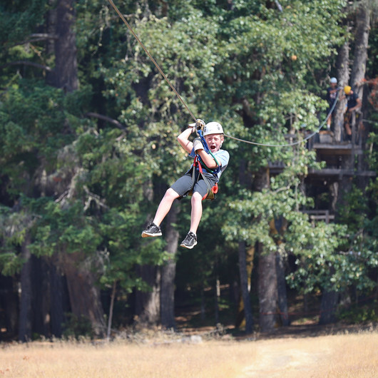 TreeHouse Ziplines