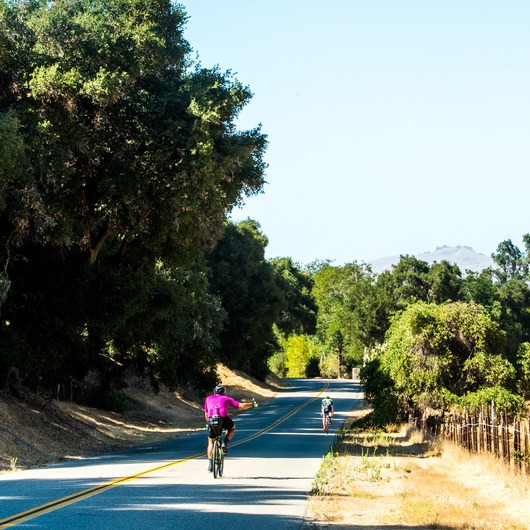 Foxen Canyon Cycle + Wine Tour