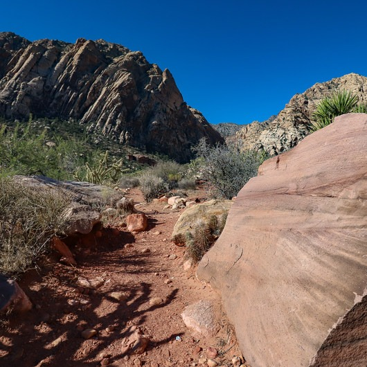 Sandstone Canyon Loop