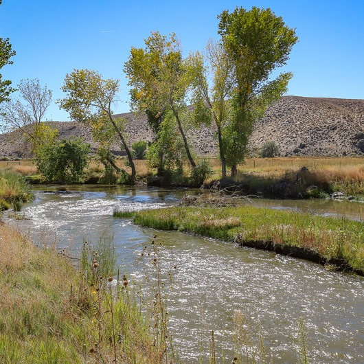Walker River State Recreation Area