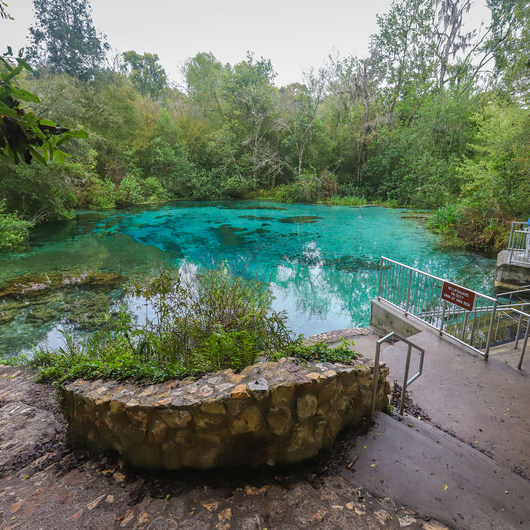 Ichetucknee + Blue Hole Springs
