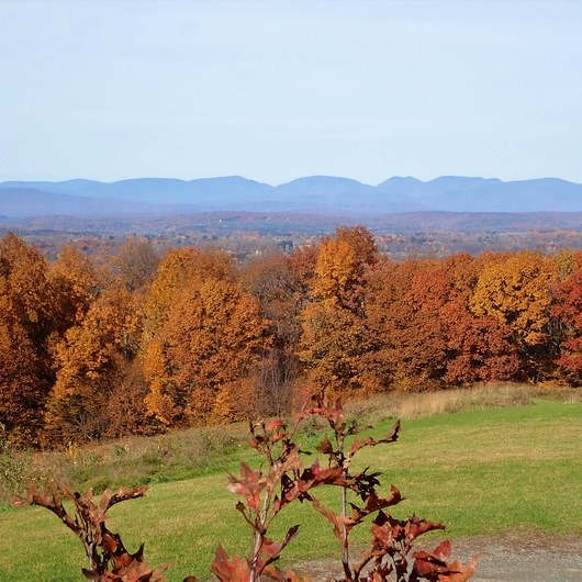 Shawangunk Ridge Trail: Mohonk Preserve Section