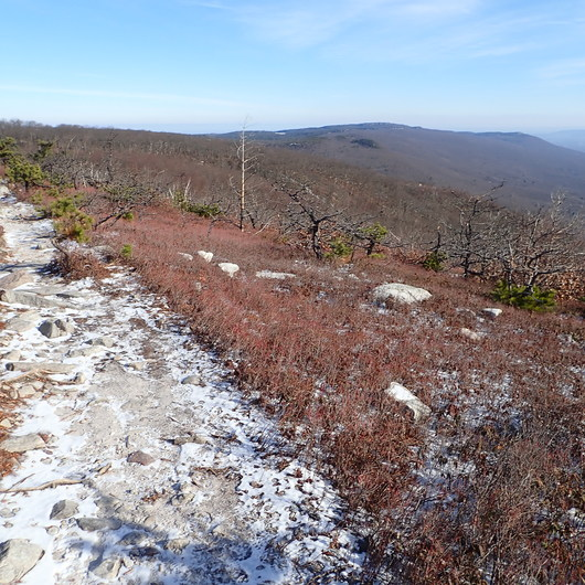 Shawangunk Ridge Trail: Sam's Point Section