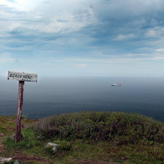 East Coast Trail: Blackhead Path