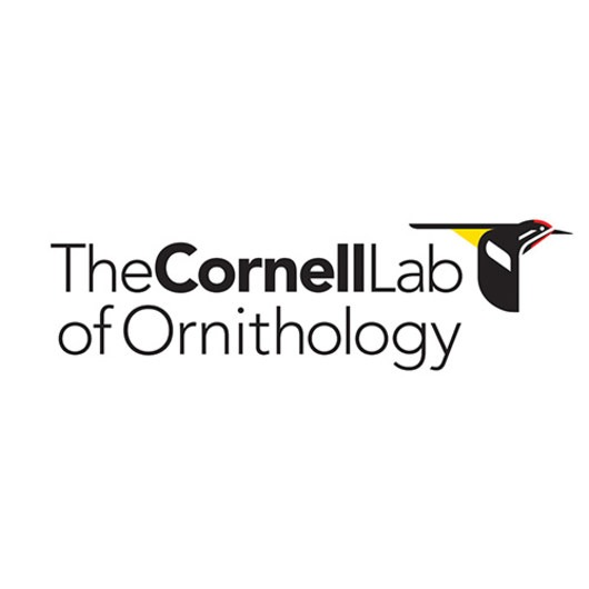 Outdoor Project partners with The Cornell Lab of Ornithology