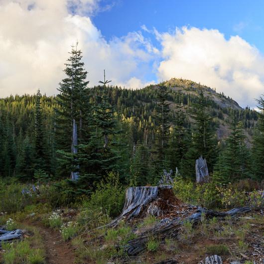 Bachelor Mountain