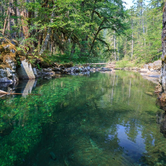 Elk Lake Creek: North Trailhead to Battle Creek