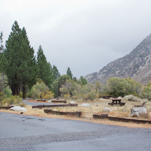 Chris Flat Campground
