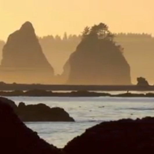 Olympic South Coast Wilderness Trail, La Push to Hoh River