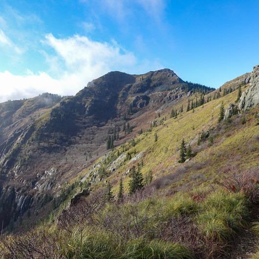 Silver Star Mountain via the Bluff Mountain Trail