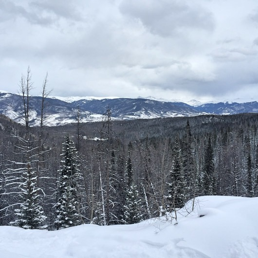 Buffalo Mountain Loop Snowshoe