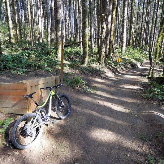 L.L. Stub Stewart State Park Mountain Bike Trails: Freeride + XC Loop