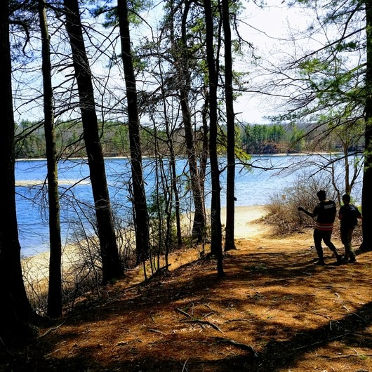 Walden Pond + Adams Woods