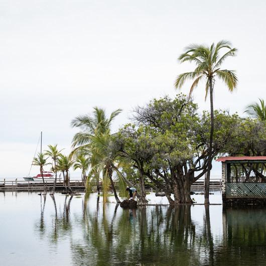 Kalahuipua'a Trail + Fishponds