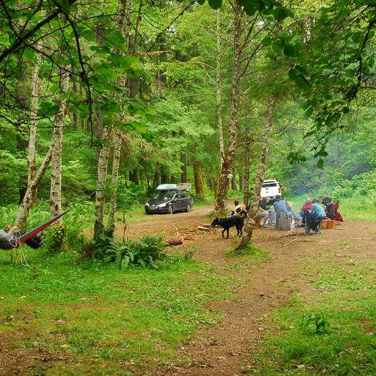 Cispus River Campsite
