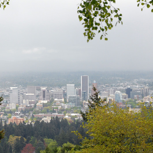 Pittock Mansion/Upper Macleay Trail