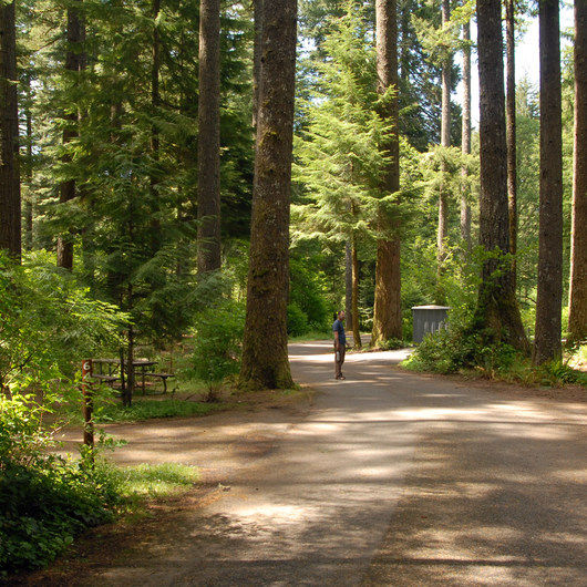 Silver Falls State Park Campground