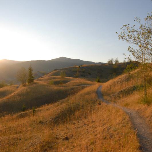 Hummocks Trail