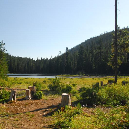Frog Lake Campground