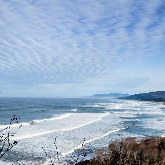 Cape Meares Big Spruce + Beach Trail