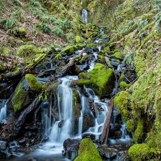 Pacific Crest Falls Hike via Herman Bridge Trail