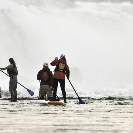Willamette Falls Canoe/Kayak