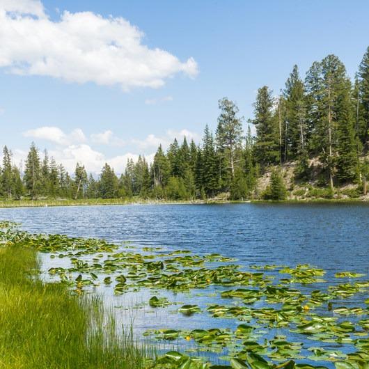 Lost Lake Loop
