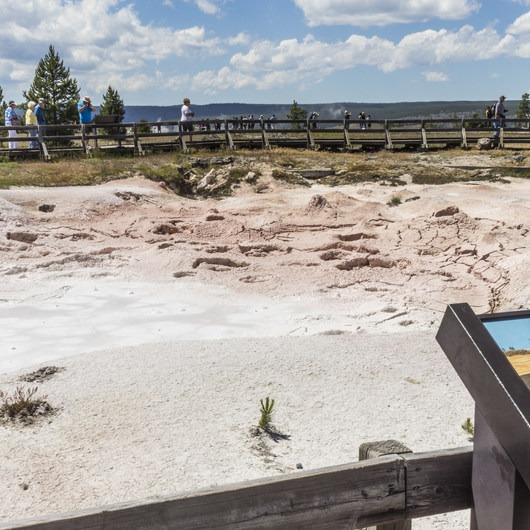 Fountain Paint Pots + Lower Geyser Basin