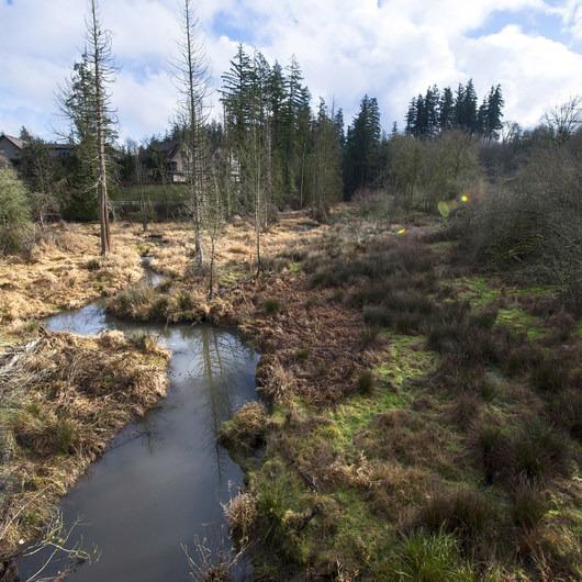 North Johnson Creek Trail