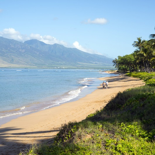 Kihei Beach - Shoreline Access 118