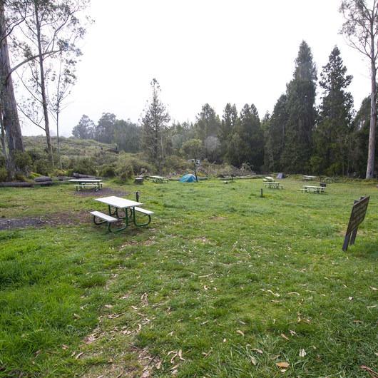 Hosmer Grove Campground