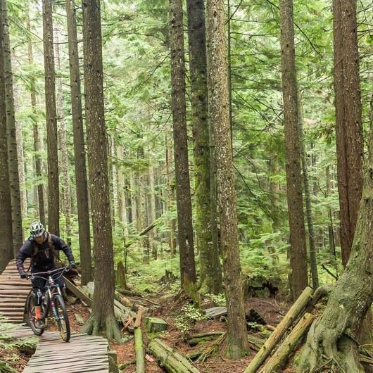 Mount Seymour Trails: CBC