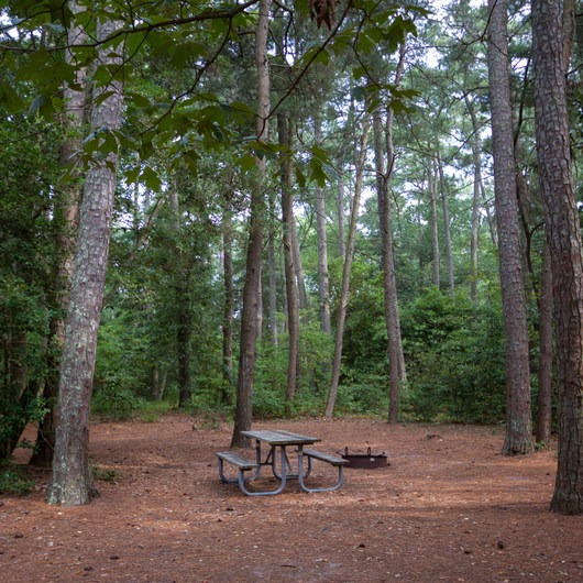 Kiptopeke State Park Campground