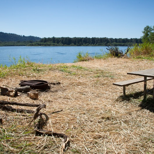 Reed Island State Park Campsite