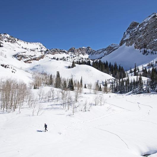 Lake Blanche Snowshoe