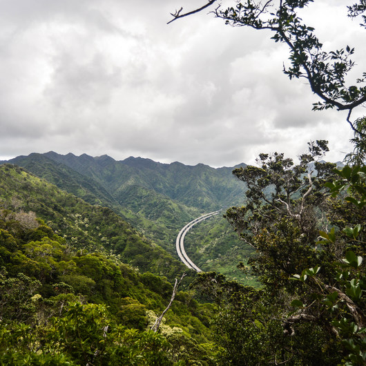 'Aiea Loop Trail