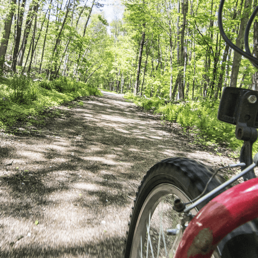 Air Line Trail: Windham to Beaver Brook