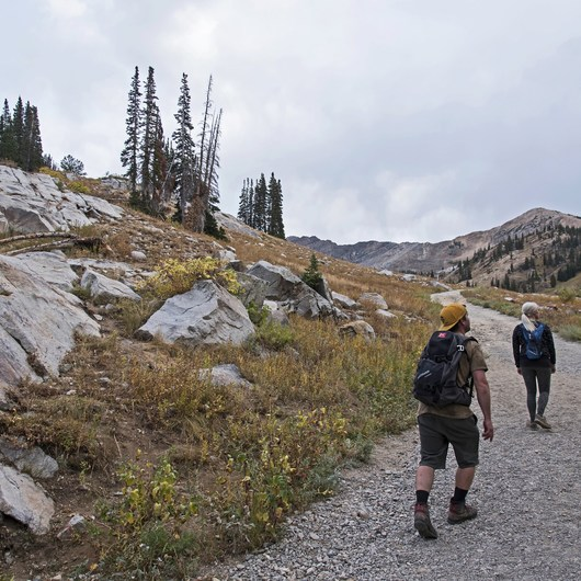 Albion Meadows Trail to Germania Pass