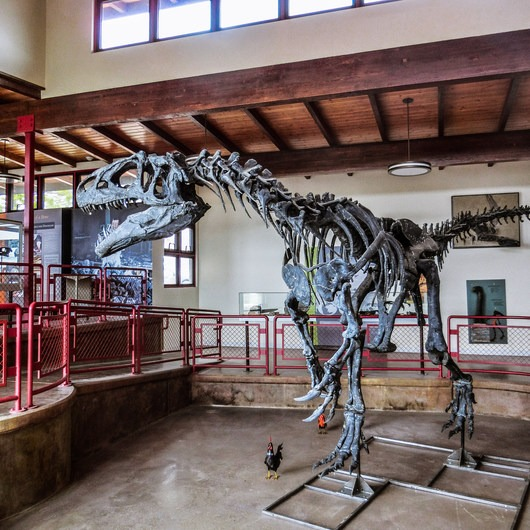 Cleveland-Lloyd Dinosaur Quarry