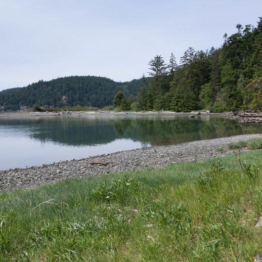 Lottie Bay