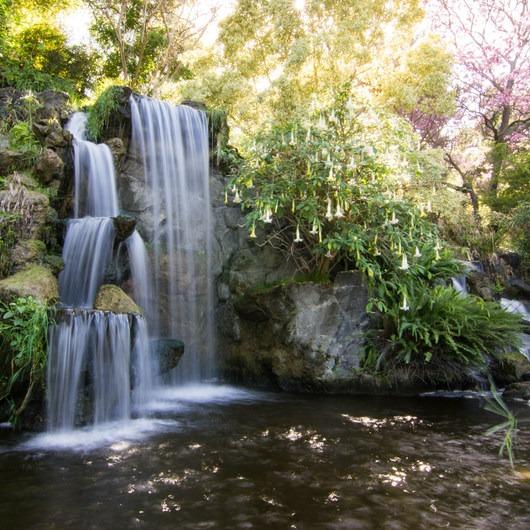 Los Angeles County Arboretum + Botanic Garden