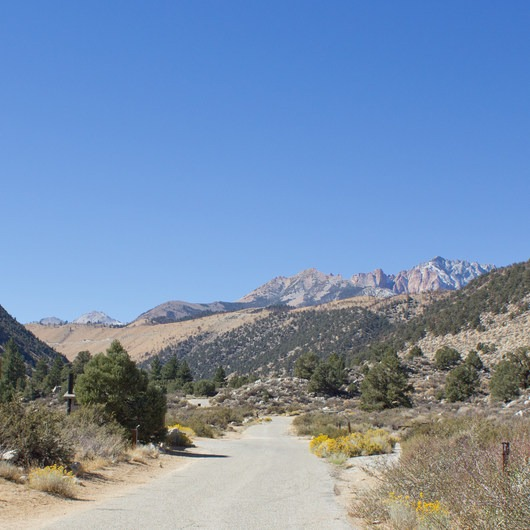 Bitterbrush Campground
