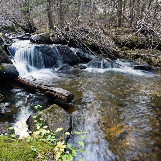 Rich Creek + Rough and Tumbling Creek Hiking Loop
