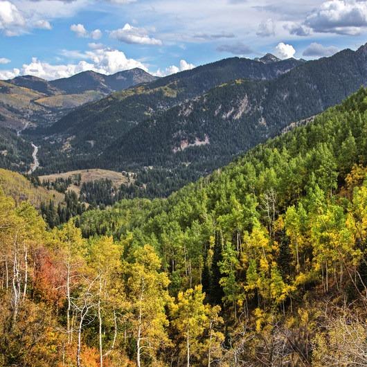 Butler Fork Trail Hike